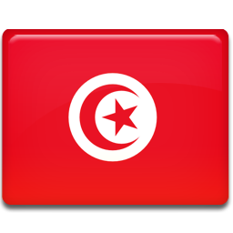 1331333762_Tunisia-Flag[1]